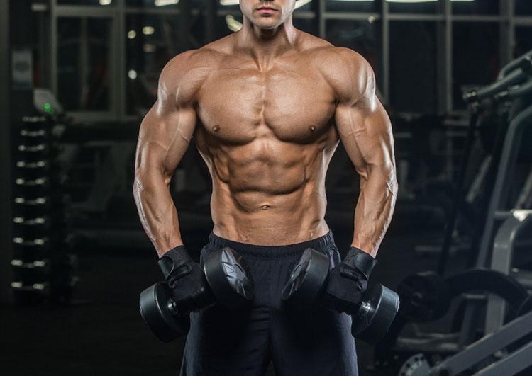 腕を太くするダンベル活用法!上腕二頭筋・上腕三頭筋・前腕筋群に効か ...