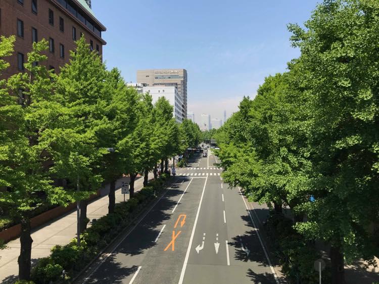 横浜マラソンコース