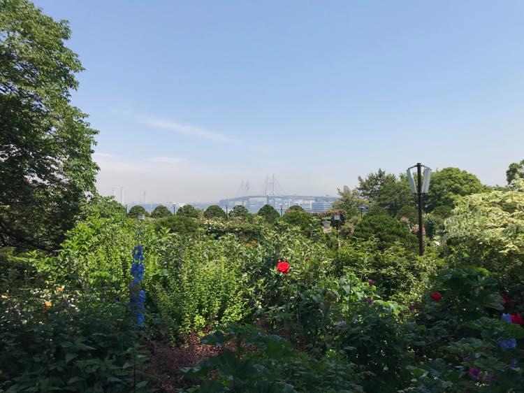 港の見える丘公園の景色