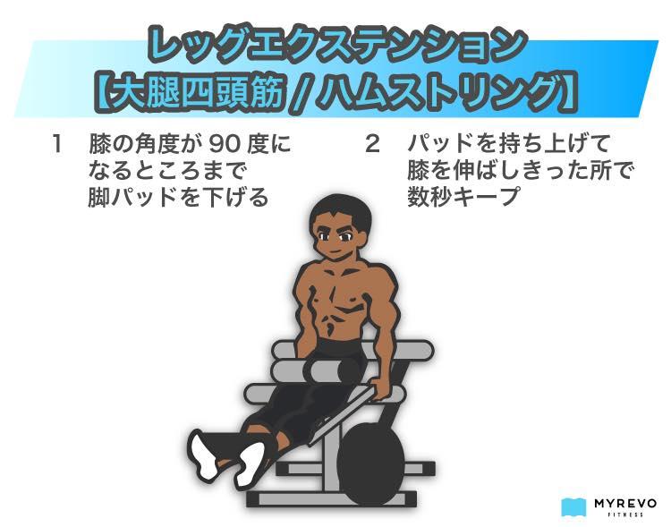 レッグエクステンション【大腿四頭筋_ハムストリング】