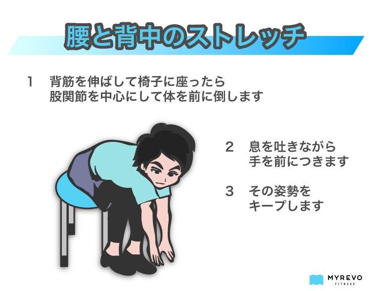 腰と背中のストレッチ