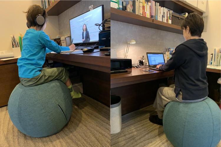 シーディングボール勉強活用画像